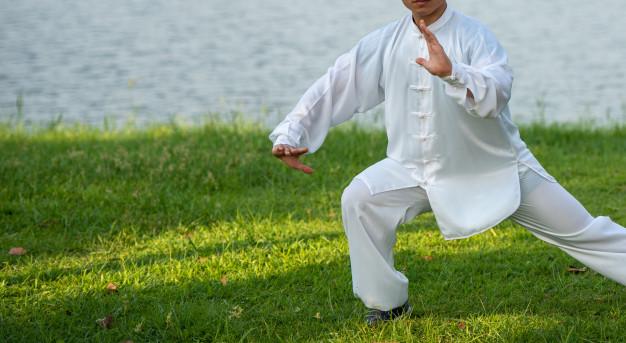 tai-chi-chuan-master-manos-entrenamiento-postura-parque_55877-962