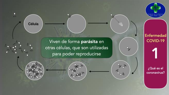 Video CORONAVIRUS 1 Que es el coronavirus MULILLATV.007