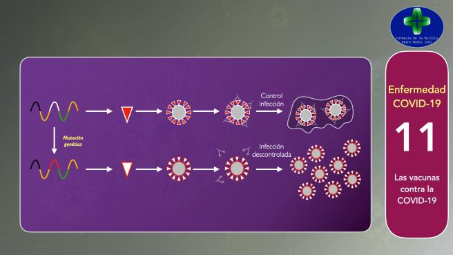 Video CORONAVIRUS 11 - Vacunas.035
